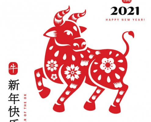 Year of the Metal Ox 2021: Happy New Year